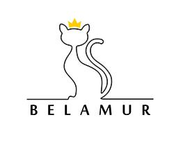 BELAMUR - vienija kačių mylėtojus, koordinuoja jų veiklą