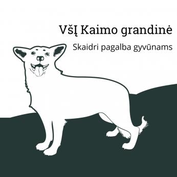 KAIMO GRANDINĖ - GYVŪNŲ GLOBOS ORGANIZACIJA