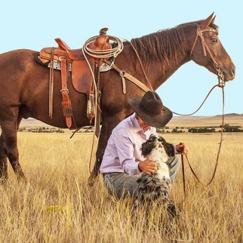 Jodinėjimas žirgu - laisvės pojūtis, pramoga ir nauda sveikatai