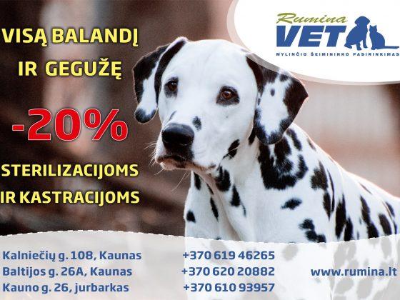 Visą Balandį ir Gegužę 20% nuolaida sterilizacijoms ir kastracijoms Kauno ir Jurbarko skyriuose. Registracija telefonais: