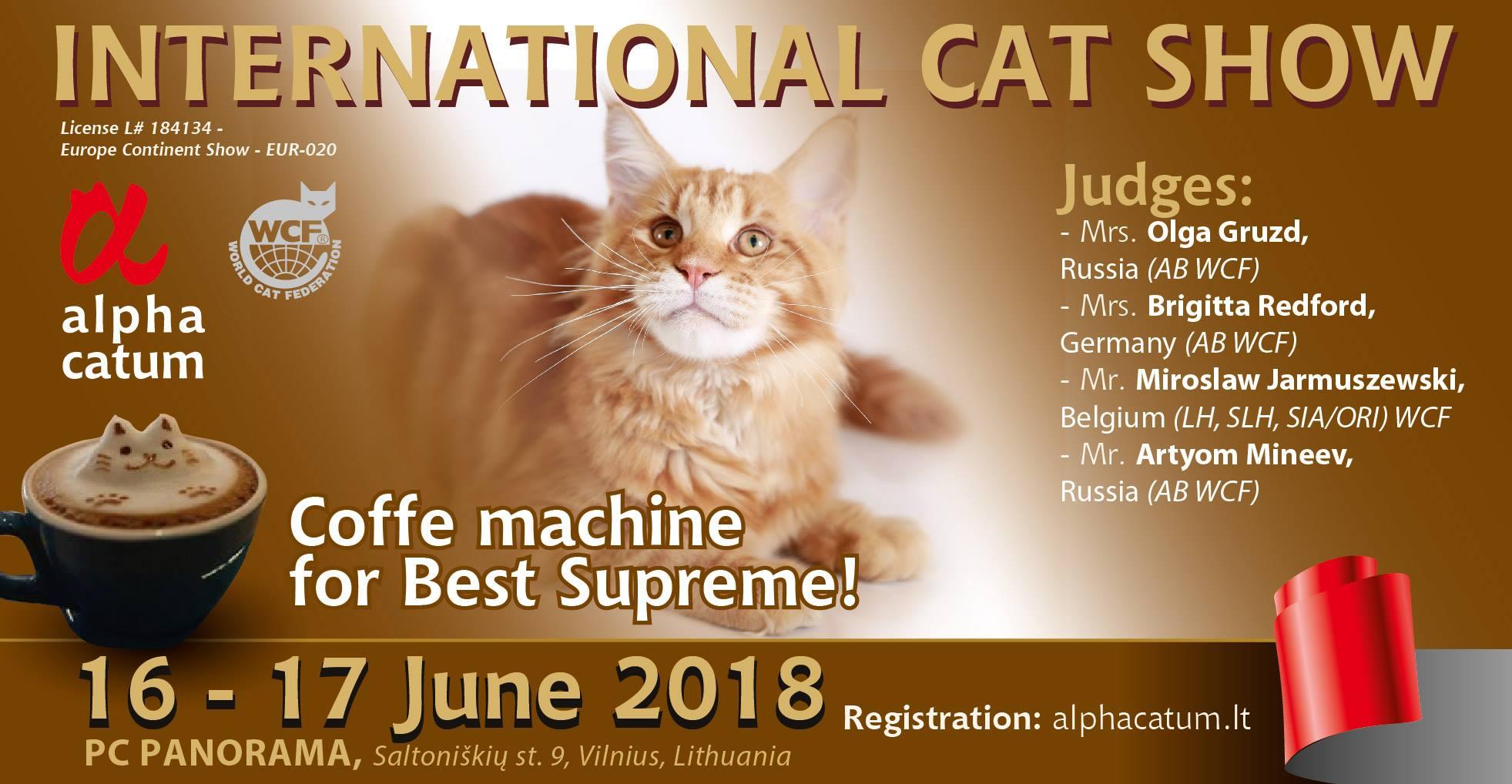 ALPHA CATUM International cat show Vilnius - Panorama