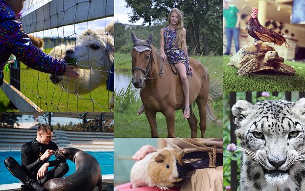 Ką privalu aplankyti gyvūnų mylėtojams šią vasarą