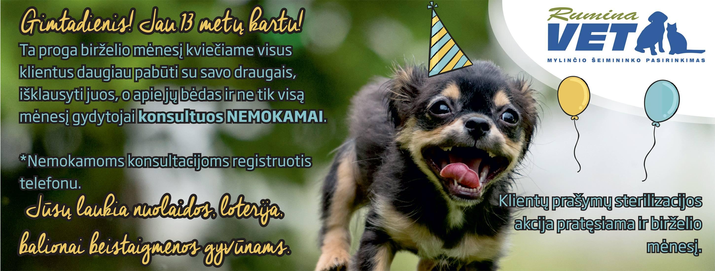 Rumina gimtadienis 13 metų kartu, akcija birželio menesi nemokamos konsultacijos