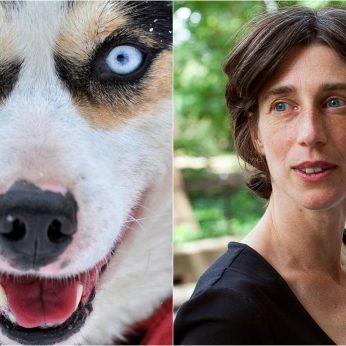 Kaip šunys mus supranta? Profesorė pateikė savo atsakymą