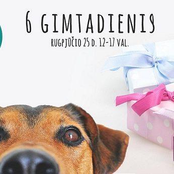 """Kviečiame į 6 – ąjį VšĮ """"Gyvūnų gerovės iniciatyvos"""" gimtadienį!"""