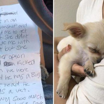 Oro uoste rastas vos 3 mėnesių šunelis prie jo prikabintas širdį draskantis laiškas