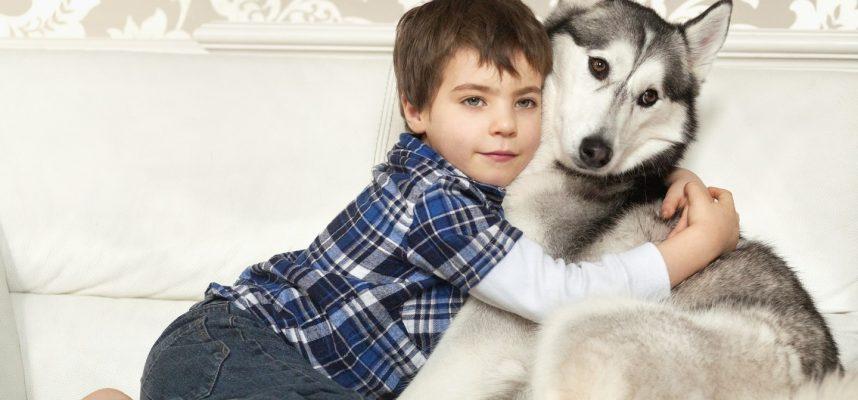 Kaip šunys paveikia vaikų gyvenimą ir elgesį mokykloje?