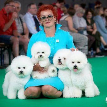 Didžiausioje pasaulinėje šunų parodoje čempiono titulas lietuviams3