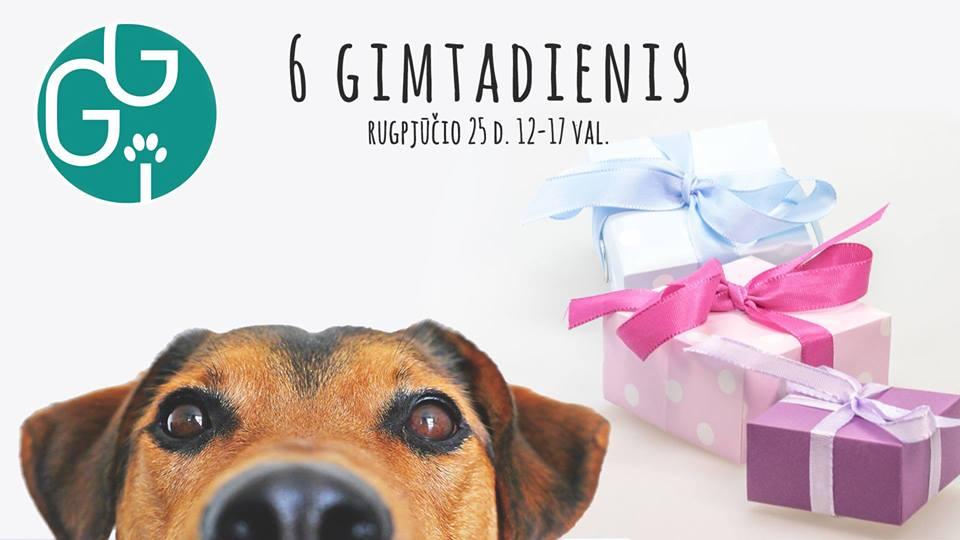 """VšĮ """"Gyvūnų gerovės iniciatyvos"""" švęs savo 6 – ąjį gimtadienį! Taip taip, mums jau šešeri metai – daug nuveikta per šį laikotarpį ir dar daugiau nuveiksime ateityje, kad mūsų keturkojams bičiuliams būtų gera gyventi šalia mūsų."""