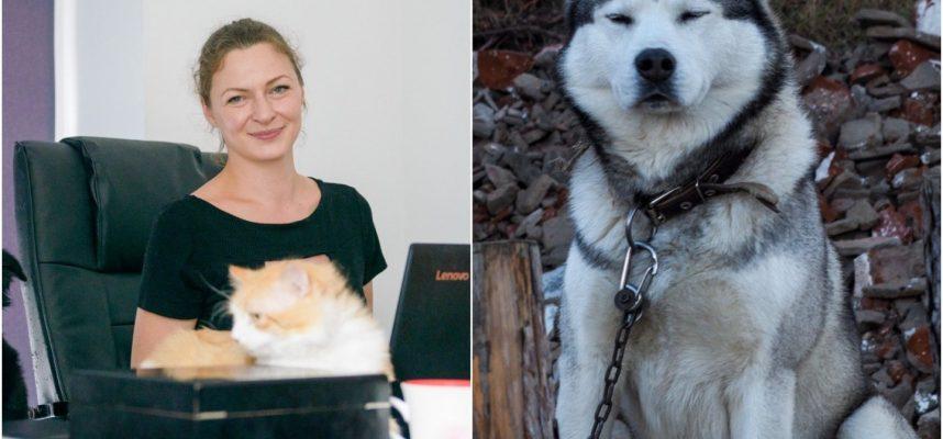 Išgirdusi apie pataisas įspėjo – gyvūnai taps keršto aukomis, o šunis teks užmigdyti