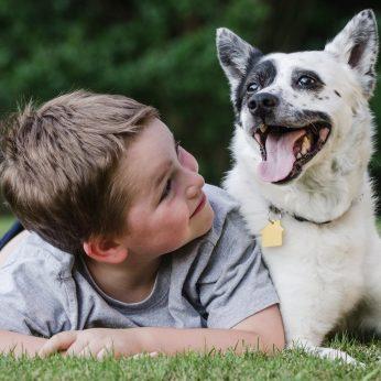 Šunų poveikis vaikų sveikatai nuostabą sukėlė viso pasaulio medikams