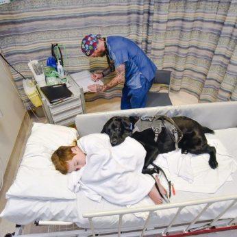 Sergančio berniuko ir šuns draugystė – net sunkios ligos patale
