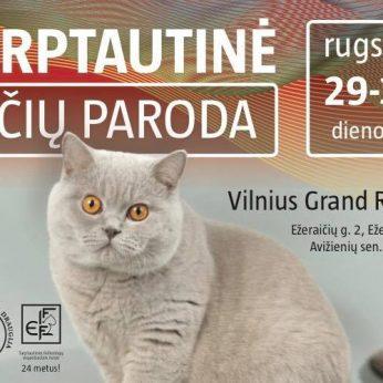 BUBASTĖ - Lietuvos felinologų draugija