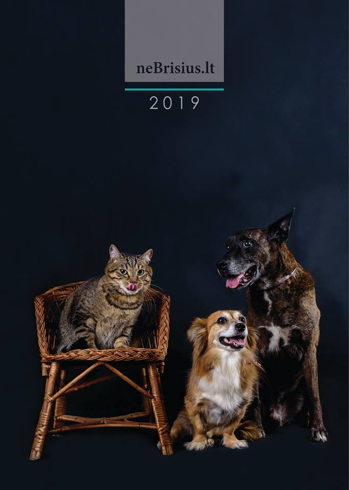 2019 metų neBrisius.lt kalendorius!