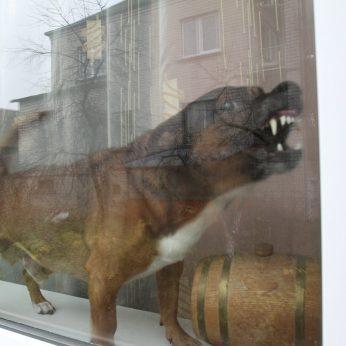 Dėl garsiai lojančių šunų šeimininkams – 300 eurų baudos
