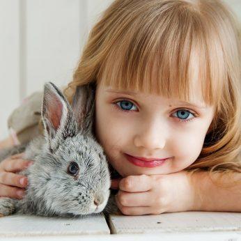 Gyvūnai – geriausi vaikų mokytojai