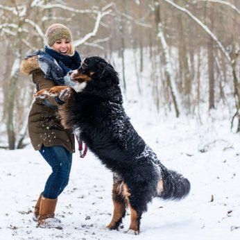 Sudarė didelių ir mielų šunų sąrašą: tarp jų – lietuvių pamėgtos veislės