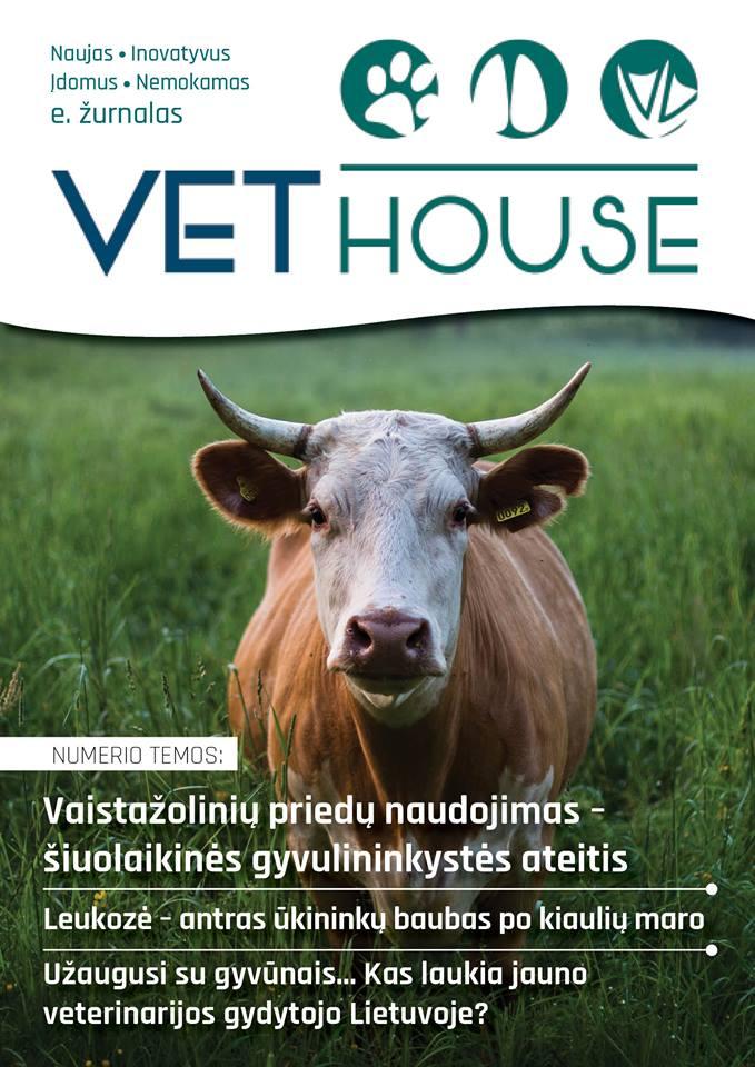 VEThouse - tai projektas, skirtas šviesti visuomenę apie naujausias technologijas VET srityje