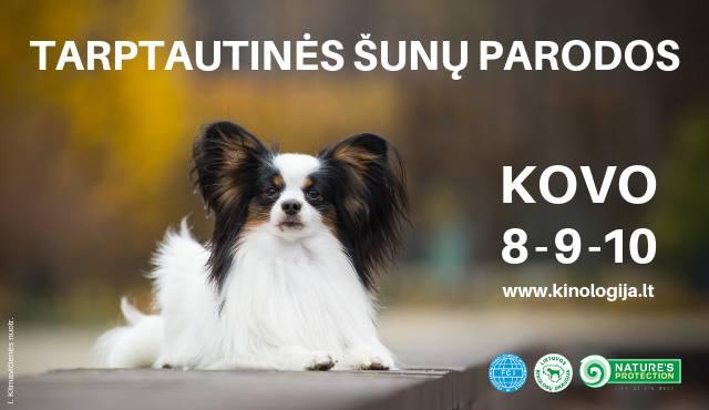 3 Tarptautinės šunų parodos Vilniuje (3 CACIB in Vilnius)