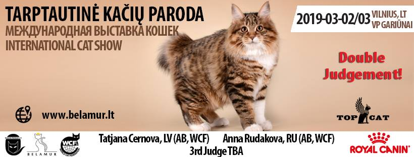 International cat show | Tarptautinė kačių paroda