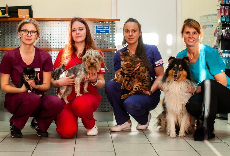 Santakos veterinarijos klinikos šaunusis kolektyvas