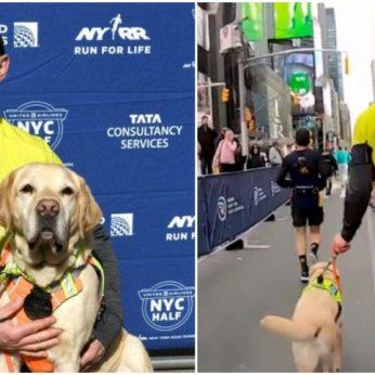Aklas bėgikas pateko į istoriją: su trimis šunimis vedliais įveikė pusmaratonį