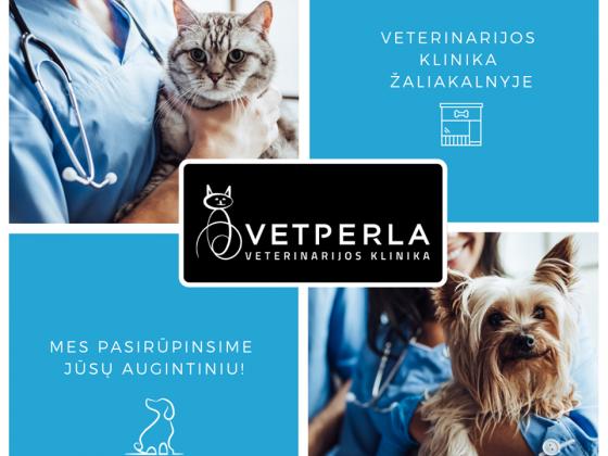 Mūsų veterinarijos klinika yra įsikūrusi pačiame Kauno centre – Žaliakalnyje.