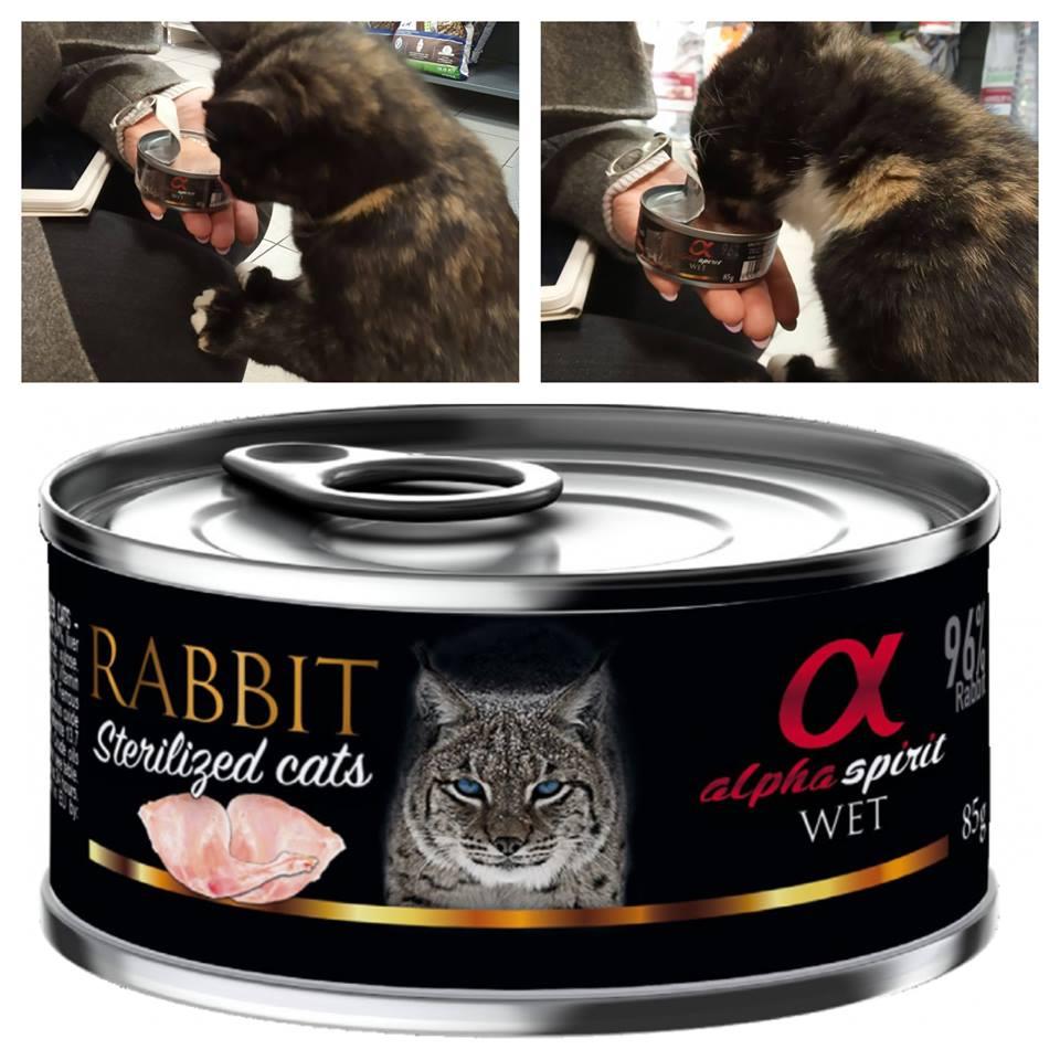Siekdami Jūsų augintinio gurmaniškųjų poreikių patenkinimo domimės naujais konservukais, kurių šį kartą dovanų gavo ir Pupa! 👀🐱 Jos vertinimas? 10 miau!!! 😻😻 Paskubėkite įsigyti ir palepinkite ir savo katinukus!!!🍽