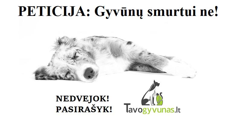 PETICIJA: Gyvūnų smurtui ne!