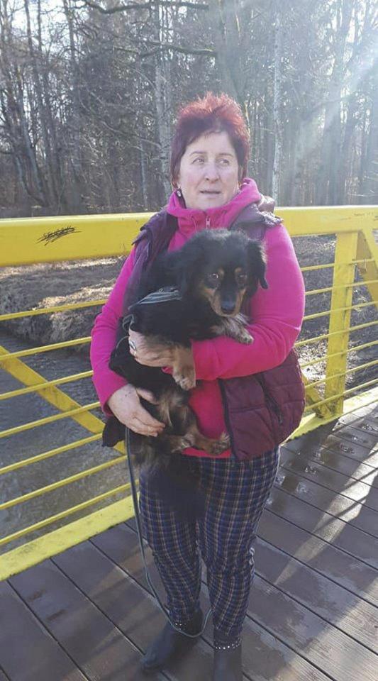 Prie medžio pririštą ir paliktą šunelį ir vėl teko gelbėti R. Vismantienei.