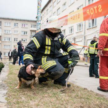 Užfiksavo jautrų ugniagesio poelgį po didelio gaisro: glaudė išsigandusį šunelį