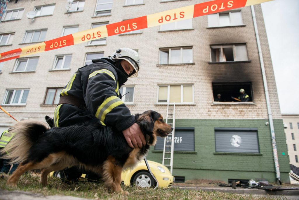 Užfiksavo jautrų ugniagesio poelgį po didelio gaisro glaudė išsigandusį šunelį1