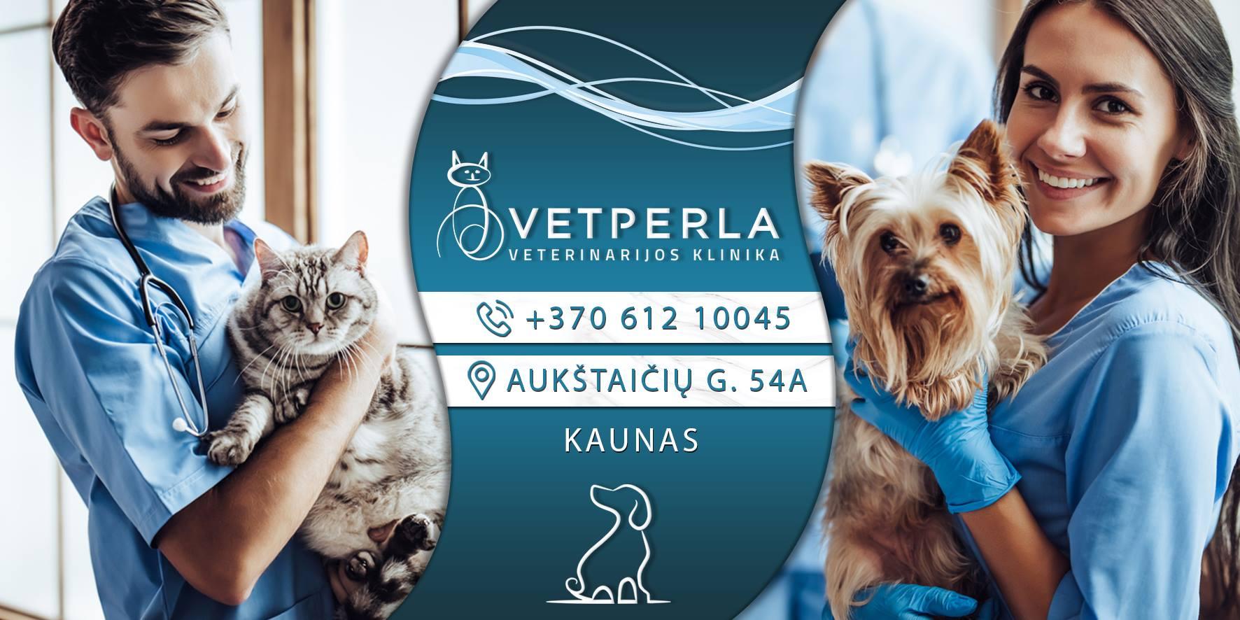 VetPerla veterinarijos klinika kauno centre