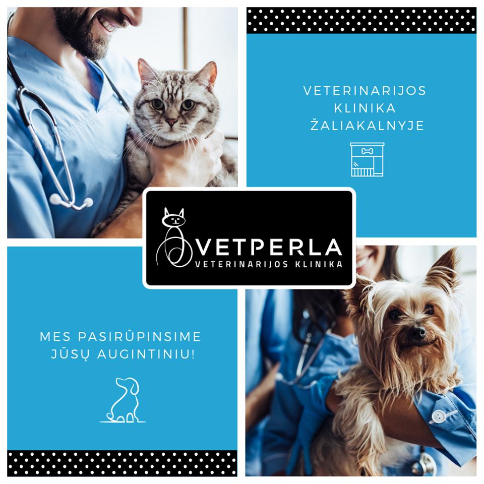 VetPerla veterinarijos klinikoje atliekamos paslaugos