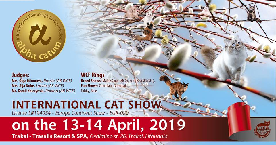 International cat show on the 13-14 April 2019