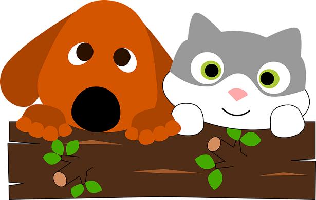 Kaip dažnai reikia suduoti vaistus nuo kirminų katėms ir šunims