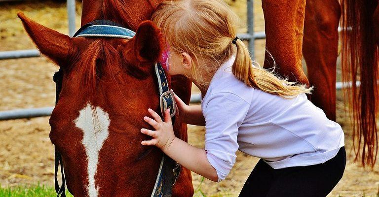Stovyklos vaikams ir paaugliams su žirgais bei kitais gyvūnais