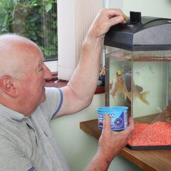 Sulaukusi 44-erių mirė seniausia auksinė žuvytė