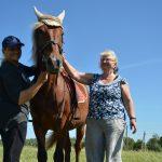 Žirgų terapija Laimos žirgyne