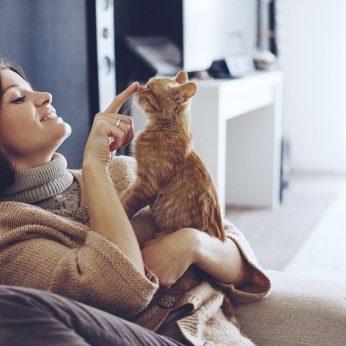 Atsakyta į seniai rūpimą klausimą, ar katės atpažįsta savo vardą