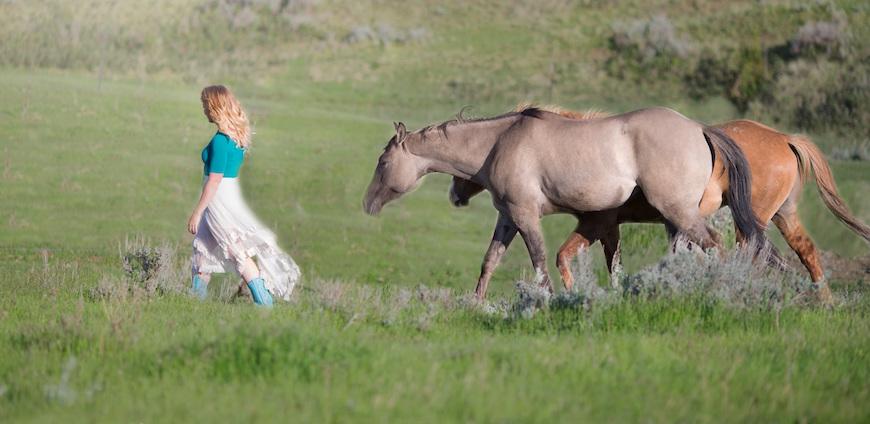Nuomojame žirgus asmeninėms, teminėms, vestuvių fotosesijoms.