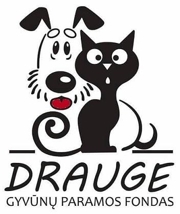 Beglobių gyvūnų labdaros ir paramos fondas atidarė savo el. parduotuvę