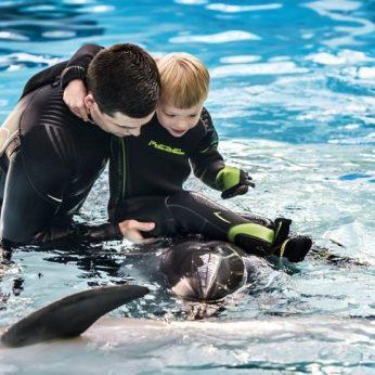 Delfinai ir džiugina, ir gydo: ledų įsigyjančių pirkėjų dovana 15-ai šeimų – delfinų terapija