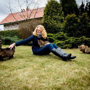 Gintė ir katinukai: gauname daug meilės ir raminančio murkimo