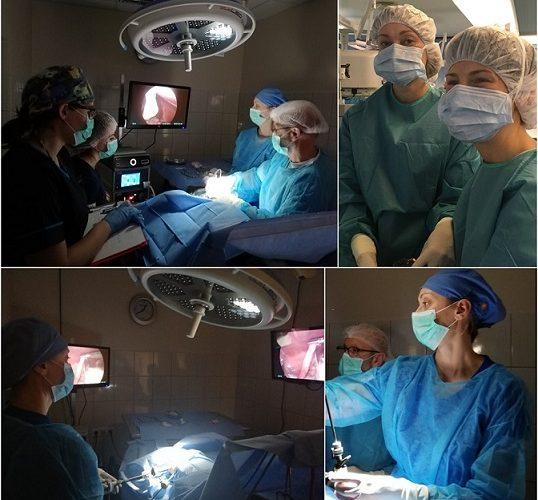 Laparoskopinė sterilizacija