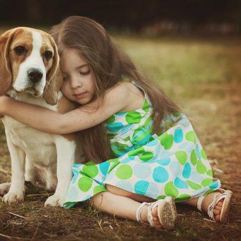 Ar šuo snukiu sugeba rodyti išraiškas? Mokslininkai atsakė ir į šį klausimą