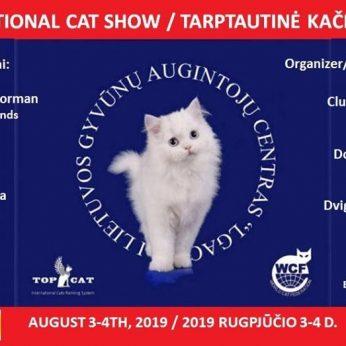 Tarptautinė kačių paroda Gariūnuose
