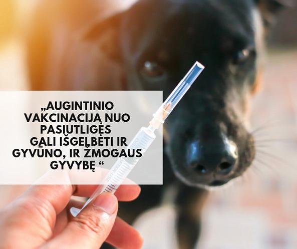 LGTAO | Veterinarinės priežiūros projektas kaimuose |