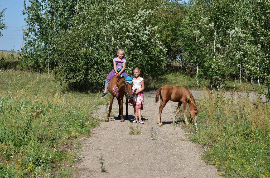 Mažieji žirgų draugai - tai edukacinė programa vaikams nuo 3-12 metų