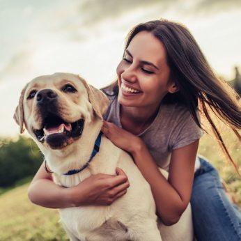 Šuns Zodiako ženklas atskleis, ko galite iš jo tikėtis